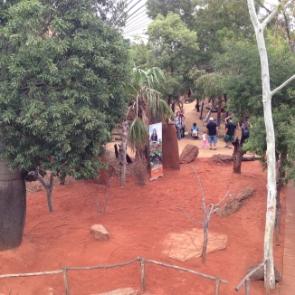 This is what the kangaroo pit looks like.